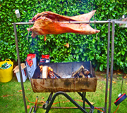spit roast catering